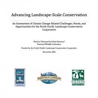 "Screenshot of report ""advancing landscape-scale conversation"""