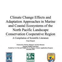 Screenshot of document Climate Change Effects & Adaptation Approaches in Marine & Coastal Ecosystems of the North Pacific Landscape Conservation Cooperative Region