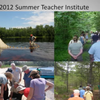 Four separate images of  groups of people doing outdoor activities
