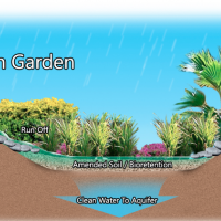 Small garden illustration with text indicating each: 'rain garden' 'drain spout or grade' 'run off' ' 'amended soil' and 'clean water to aquify'